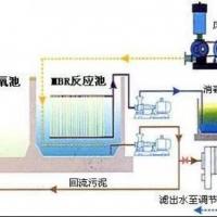 屠宰废水处理技术解析